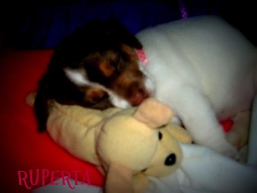 Durmiendo con su hermanito teddy!