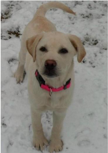 :) la encanta la nieve!!!