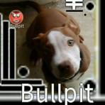 BULLPY