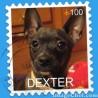 Dexter2009