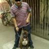 Gerardo1
